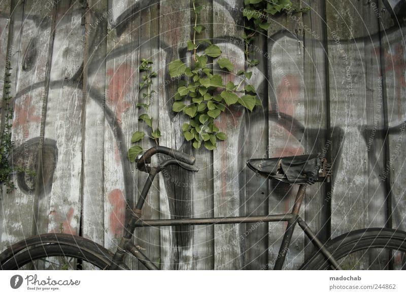 Unsichtfahr Lifestyle Mauer Wand Verkehrsmittel Fahrrad authentisch dreckig einfach frei retro trashig trist ästhetisch Mobilität Pause skurril Verfall