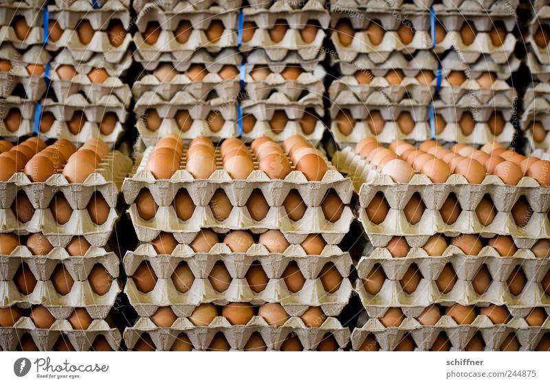 ...und sonntags auch mal zwei Lebensmittel Frühstück Ei viele Markt Stapel Marktstand Massentierhaltung Eierkarton Markthalle Eierverkäufer Eierproduktion