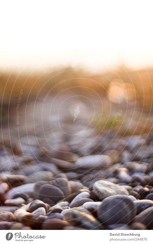 Steiniger Weg Natur Sommer ruhig Wege & Pfade Kieselsteine steinig