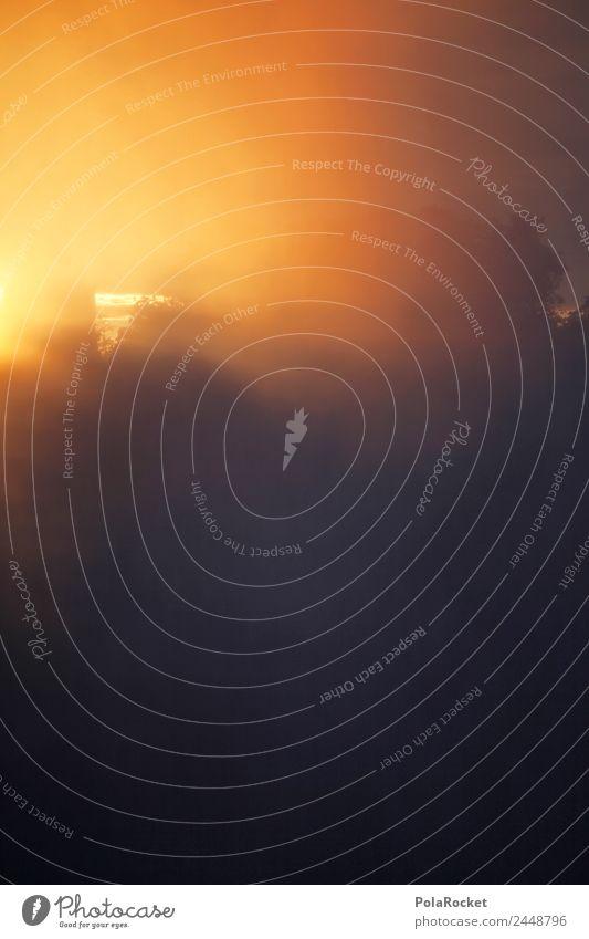 #A# Sun Is Up Kunst Abenteuer ästhetisch Sonnenaufgang Niagara Fälle Wolken Gold Farbfoto mehrfarbig Außenaufnahme Detailaufnahme Experiment abstrakt