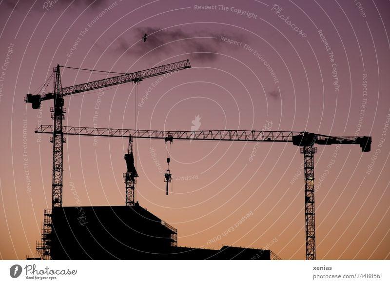Baukräne in der Dämmerung Stadt schwarz Gebäude orange Hochhaus Beton Baustelle violett Handwerk Arbeitsplatz bauen Feierabend Baugerüst Baukran Kranfahrer