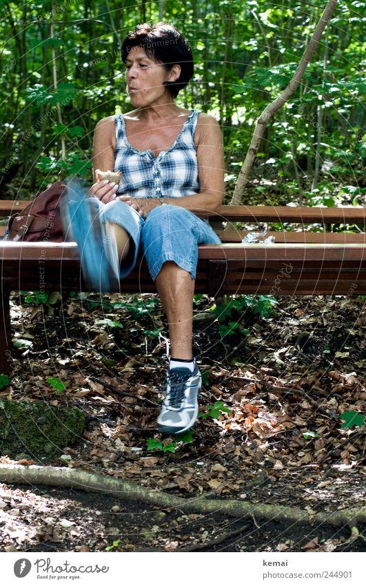 Vesperpause Frau Sommer Erwachsene Erholung feminin Leben Spielen Bewegung Beine Fuß Essen Zufriedenheit Freizeit & Hobby Haut sitzen Ausflug