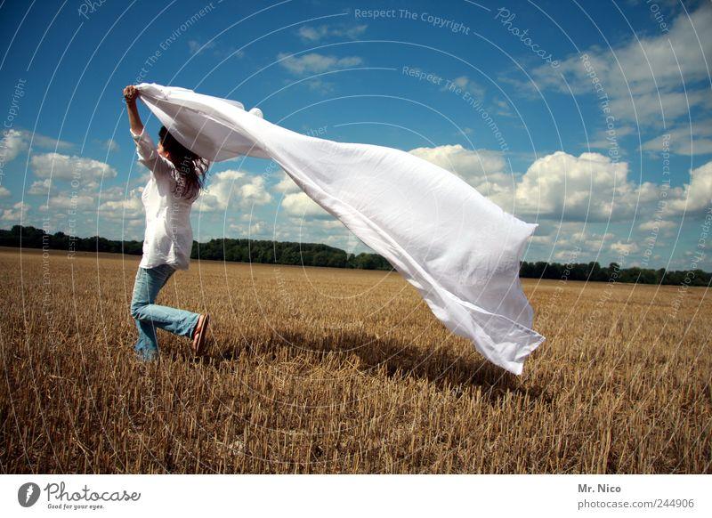 ökotrockner Frau Natur weiß Sommer Freude Wolken Erwachsene Umwelt Landschaft Freiheit Glück Stil Wetter Wind Feld laufen