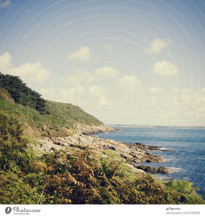 greenish Umwelt Natur Landschaft Pflanze Urelemente Wasser Himmel Wolken Sonnenlicht Sommer Wetter Schönes Wetter Gras Sträucher Wiese Hügel Felsen Wellen Küste