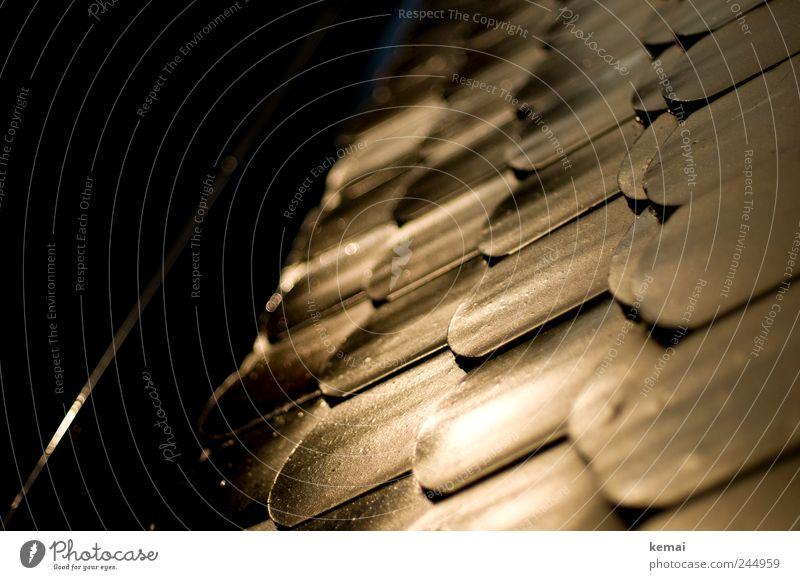 Nach Regen Sonne und andersrum Haus Dach Dachziegel Regenrinne glänzend leuchten dunkel hell nass Farbfoto Gedeckte Farben Außenaufnahme Menschenleer Abend