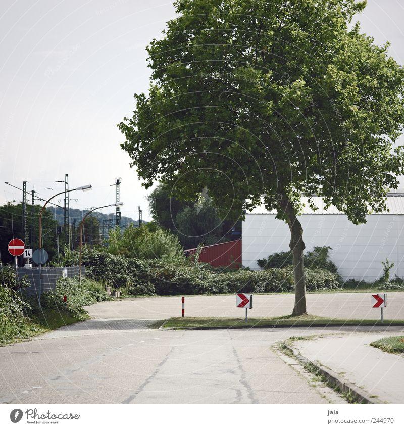 kurve Himmel Pflanze Baum Sträucher Wildpflanze Haus Industrieanlage Straße Wege & Pfade Verkehrszeichen Verkehrsschild grau grün Farbfoto Außenaufnahme