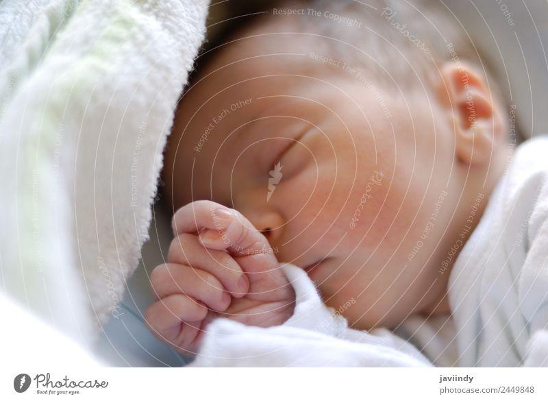 Neugeborenes Mädchen im Hostpitalbett schläft. schön Haut Gesicht Medikament Leben Kind Krankenhaus Baby Frau Erwachsene Familie & Verwandtschaft Kindheit 1