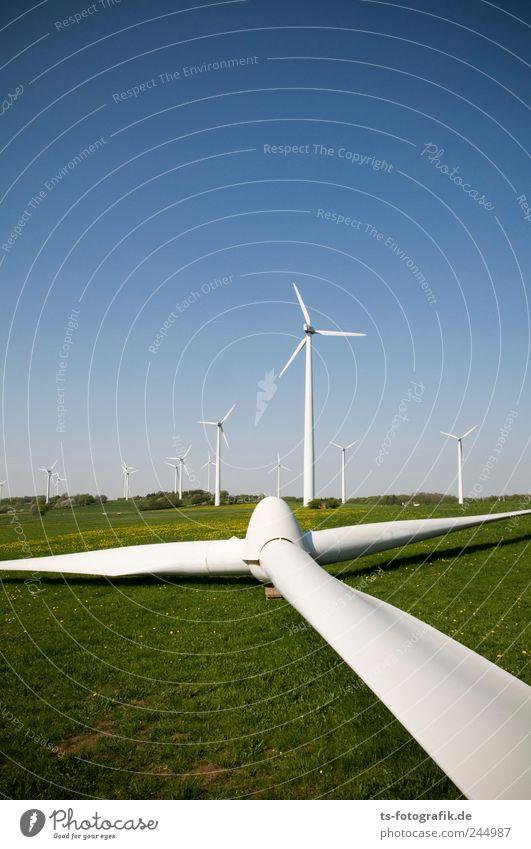 Spargelernte Natur blau grün Wiese Gras Landschaft Luft Umwelt Wind Erde Horizont Energie Energiewirtschaft liegen Technik & Technologie kaputt