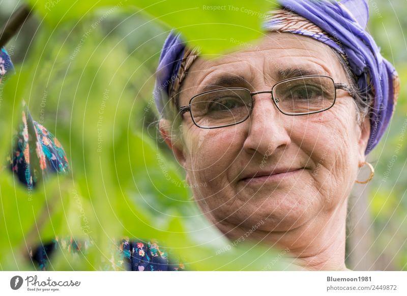 Frau Mensch Natur Gesunde Ernährung alt Pflanze blau grün Blatt ruhig Gesundheit Lifestyle Erwachsene Leben Religion & Glaube Umwelt