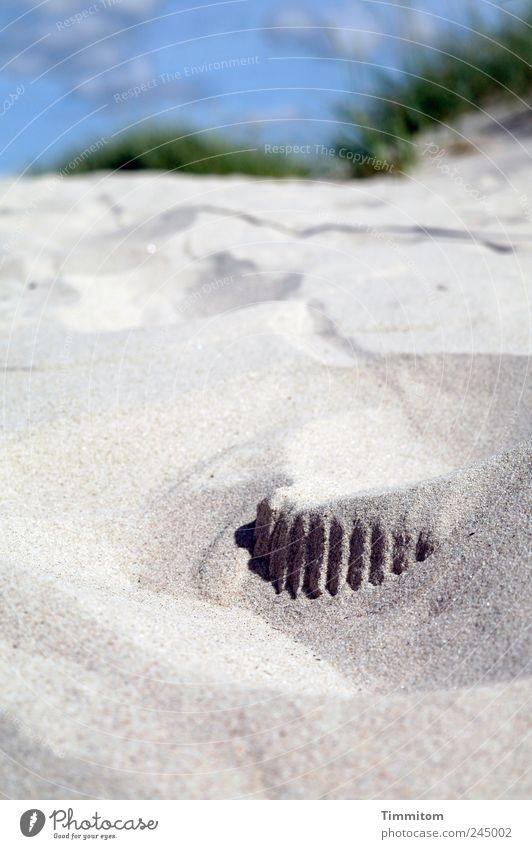 Rätsel im Sand Himmel Natur Sommer Ferien & Urlaub & Reisen ruhig grau Landschaft Umwelt Lebensfreude Nordsee Düne Dänemark