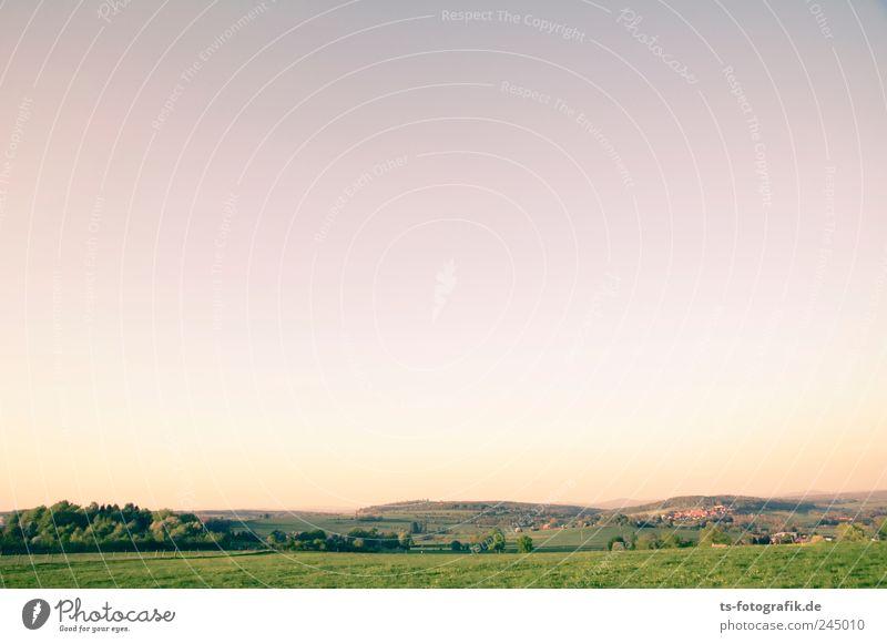 Vogelsberger Farbpalette Umwelt Natur Landschaft Tier Erde Himmel Wolkenloser Himmel Horizont Sonnenaufgang Sonnenuntergang Sommer Schönes Wetter Baum Wiese