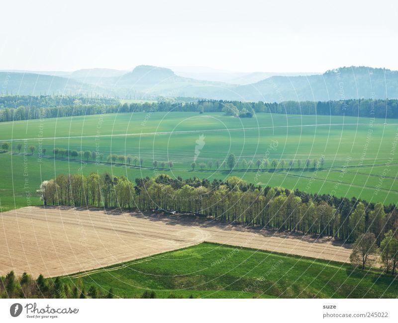Fern sehen Ferien & Urlaub & Reisen Tourismus Ferne Freiheit Berge u. Gebirge Umwelt Natur Landschaft Urelemente Erde Luft Himmel Wolkenloser Himmel Horizont