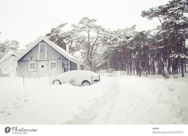 Winter Ferien & Urlaub & Reisen Winterurlaub Häusliches Leben Haus Umwelt Natur Himmel Wolkenloser Himmel Eis Frost Schnee Baum Wald Einfamilienhaus Hütte
