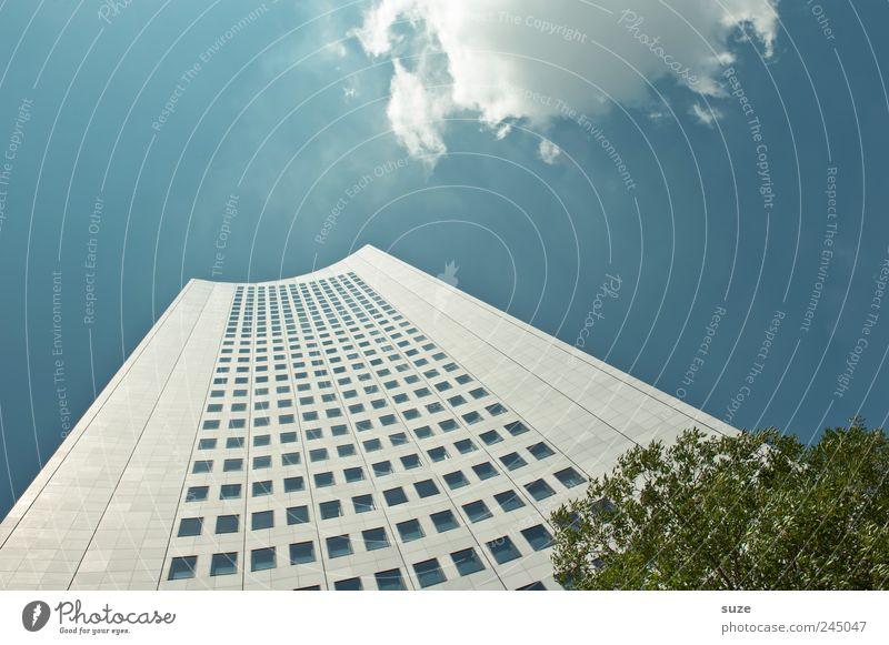 Hochhinaus Himmel blau Baum Wolken Haus Umwelt Fenster Architektur Gebäude Business Arbeit & Erwerbstätigkeit Wetter Fassade hoch modern Hochhaus