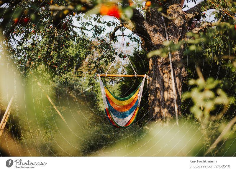 Hängematte im Sommer Lifestyle harmonisch Wohlgefühl Zufriedenheit Erholung ruhig Freizeit & Hobby Ferien & Urlaub & Reisen Tourismus Freiheit Sommerurlaub