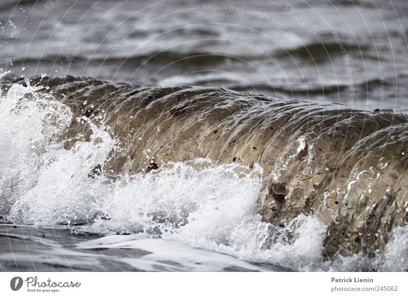Wellenrausch Natur Wasser blau Ferien & Urlaub & Reisen Meer Ferne Freiheit Landschaft Umwelt Küste Stimmung Wetter Wellen Wind nass Horizont