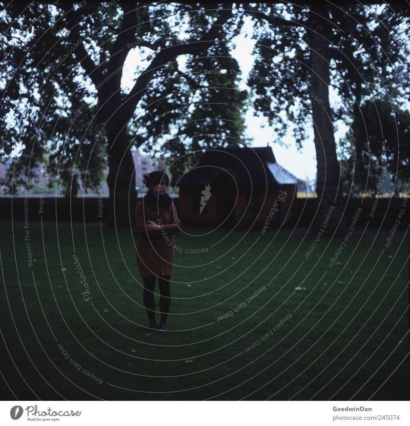 2. Kapitel Mensch feminin Junge Frau Jugendliche Erwachsene Partner 1 Umwelt Pflanze Baum Park London Hauptstadt Stadtzentrum Haus Hütte beobachten festhalten
