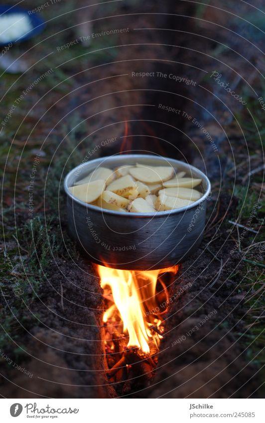 fire in the earth Lebensmittel Kartoffeln Abendessen Picknick Topf Freizeit & Hobby Ferien & Urlaub & Reisen Expedition Camping Sommer Natur Erde Feuer