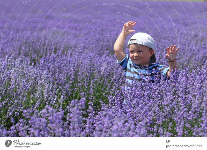 Lavendel-Freiheit Lifestyle exotisch Freude Duft Freizeit & Hobby Muttertag Kindererziehung Bildung Mensch Baby Geschwister Familie & Verwandtschaft Kindheit