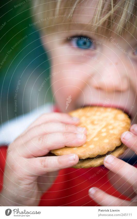 Keeekseee! Lebensmittel Süßwaren Ernährung Essen schön Freizeit & Hobby Kind Mensch Junge Kindheit Auge Hand 1 3-8 Jahre süß Pause Keks doppelkeks Schokolade