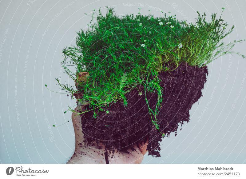 Meine Scholle Hand Umwelt Natur Pflanze Moos Arbeit & Erwerbstätigkeit tragen nachhaltig grün schwarz authentisch rein Wachstum Farbfoto Gedeckte Farben