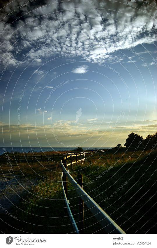 Koppel mit Seeblick Umwelt Natur Landschaft Pflanze Himmel Wolken Horizont Klima Schönes Wetter Baum Gras Küste Ostsee Weide Zaun Begrenzung Schonen Nordeuropa