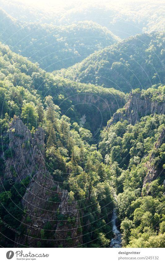 Hinter den sieben Bergen … Natur Sommer Einsamkeit ruhig Wald Ferne Umwelt Landschaft Berge u. Gebirge Freiheit Wege & Pfade Deutschland Wetter Felsen