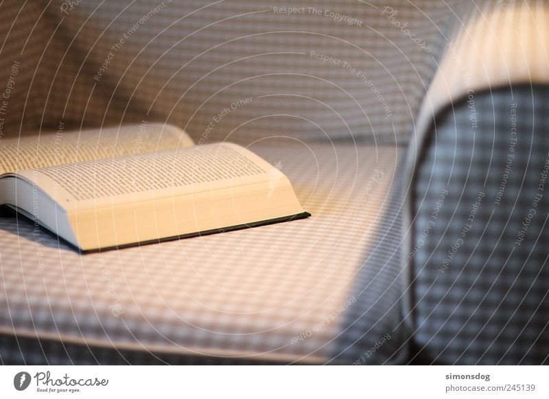 leseabend Erholung Stimmung Freizeit & Hobby Beleuchtung Buch lernen Studium Buchstaben Bildung Sofa Möbel kuschlig Wissen Sessel Text Feierabend