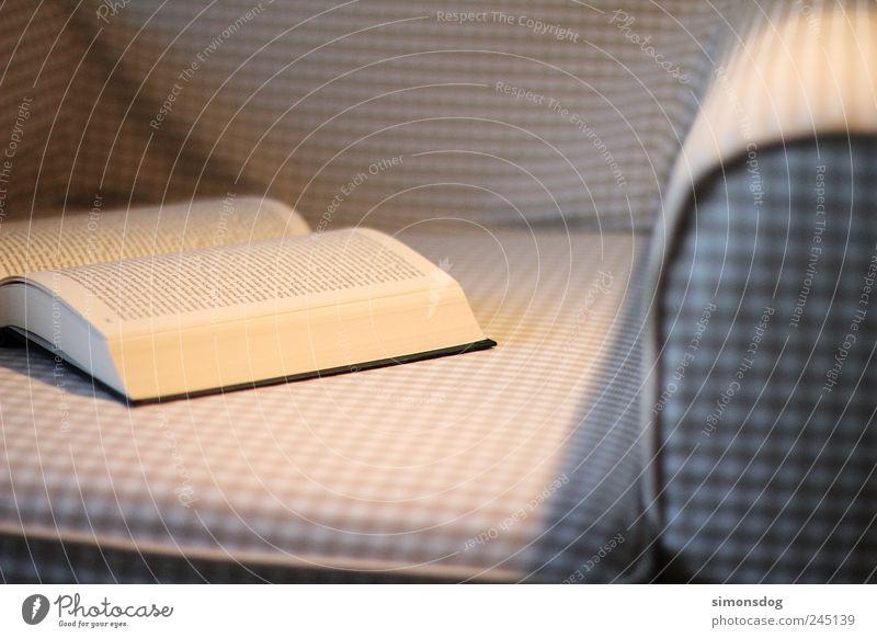 leseabend Möbel Sofa Sessel Bildung lernen Studium Feierabend Buch gebrauchen Erholung kuschlig Freizeit & Hobby Stimmung Wissen Buchstaben Text blättern