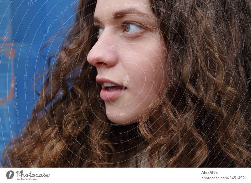 Seitliches Portrait einer jungen Frau mit langen, lockigen, brünetten Haaren schön Haare & Frisuren Gesicht Wohlgefühl Junge Frau Jugendliche 18-30 Jahre