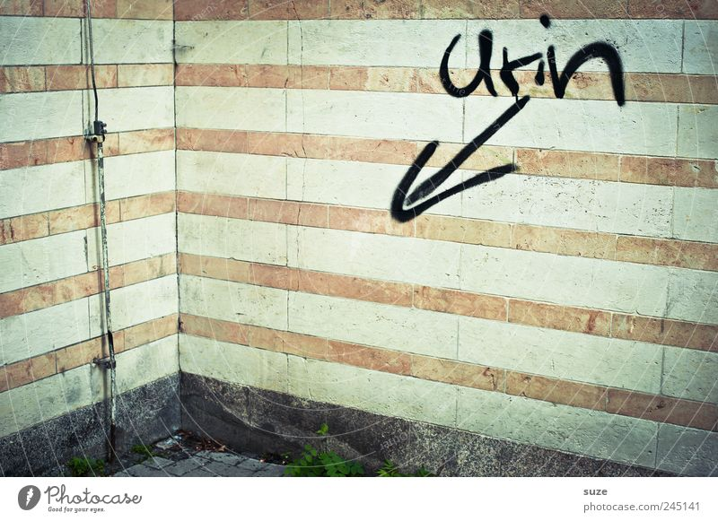Freihand Mauer Wand Fassade Schriftzeichen Linie Pfeil Streifen authentisch dreckig lustig trashig trist Urin Ecke Blitzableiter Typographie Handschrift