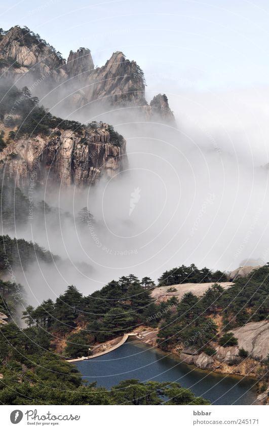 Berg- und Seenlandschaft im Morgennebel schön Ferien & Urlaub & Reisen Sommer Berge u. Gebirge Umwelt Natur Landschaft Pflanze Himmel Wolken Wetter Nebel Baum