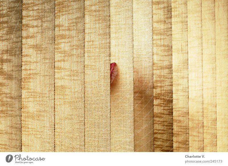 Vorsichtiger Durchbruch Pflanze rot Fenster Linie braun retro Stoff einfach Warmherzigkeit Neugier Schutz Symmetrie Willensstärke Lamellenjalousie Sichtschutz