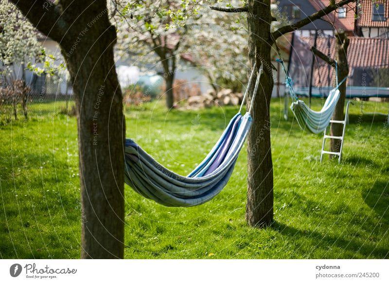 Ausspannen Natur Baum Ferien & Urlaub & Reisen ruhig Leben Wiese Freiheit Gras Frühling Garten Umwelt Zeit frei Lifestyle Freizeit & Hobby liegen