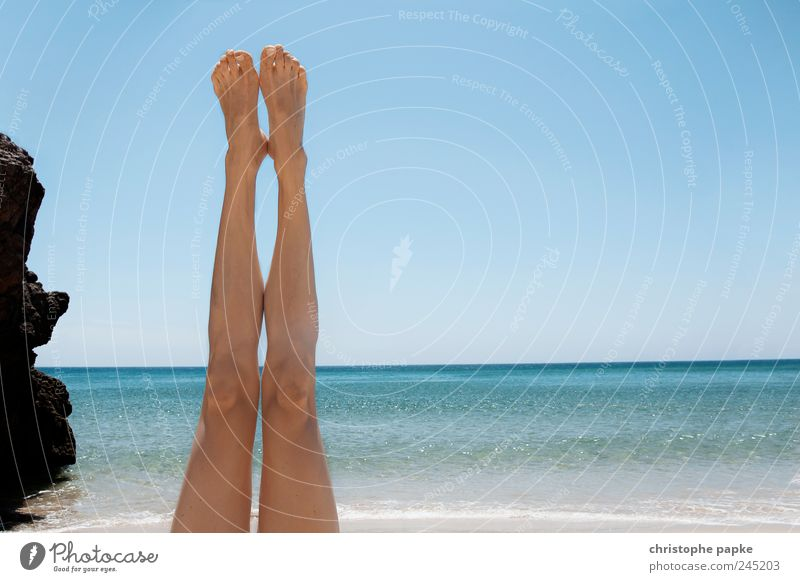 Urlaub Down-Under Freude Sommer Ferien & Urlaub & Reisen Strand Meer feminin Beine Fuß Wellen liegen dünn Lebensfreude Schönes Wetter Sonnenbad Sommerurlaub
