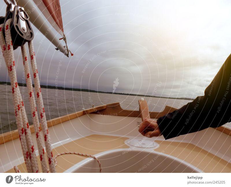 einhandsegler Sport Wassersport Arme Hand 1 Mensch Umwelt Natur Luft Küste Fjord Ostsee nachhaltig Stecknadel Segeln Jolle Schnur Seil seilzug lenken Steuermann