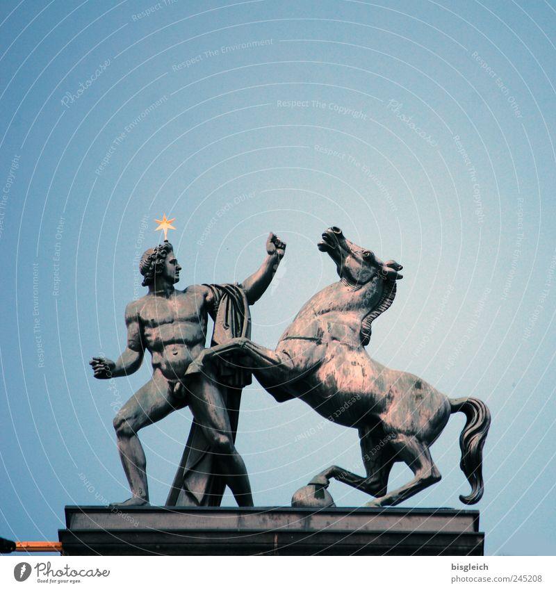 Castor oder Pollux? Himmel blau Tier Berlin grau Deutschland Kraft Stern Europa Dach Pferd Statue Museum Skulptur Hauptstadt Sehenswürdigkeit