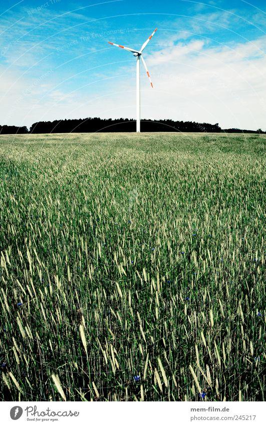 windrad hinter biomasse Landschaft Feld Energie Energiewirtschaft Elektrizität Windkraftanlage Weizen Windrad alternativ Gebäude Brandenburg Windmühle