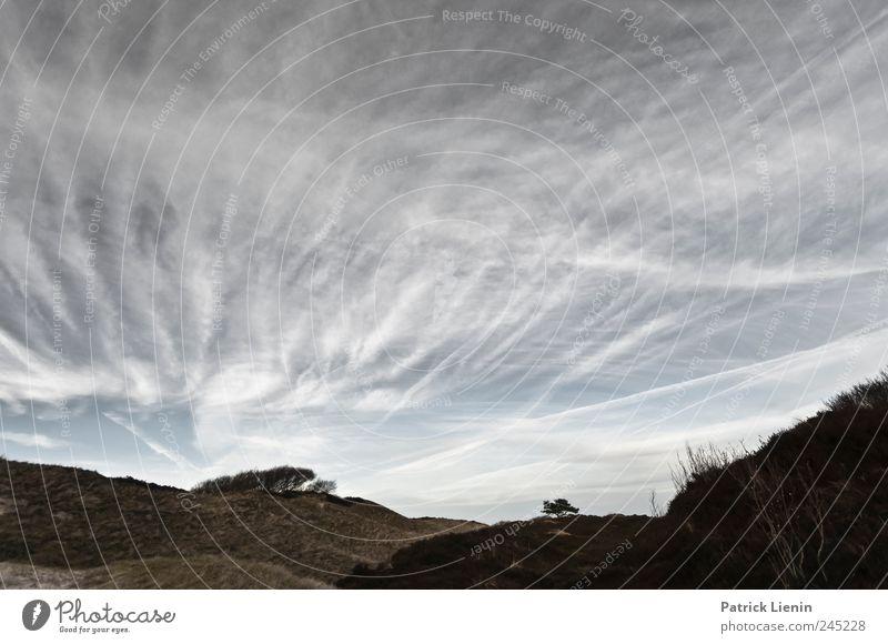 Spiekeroog | Away & Anywhere Himmel Natur Ferien & Urlaub & Reisen Wolken Einsamkeit Ferne Freiheit Landschaft Umwelt Sand Stimmung hell Wetter Erde Zufriedenheit Freizeit & Hobby