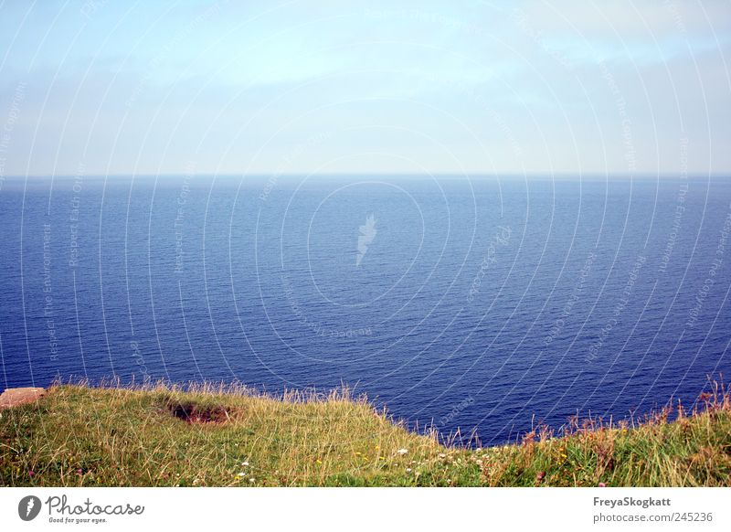Unperfekt Himmel Natur Wasser grün blau Sommer Ferien & Urlaub & Reisen Meer Ferne Wiese Freiheit Gras Luft Wellen Erde Horizont