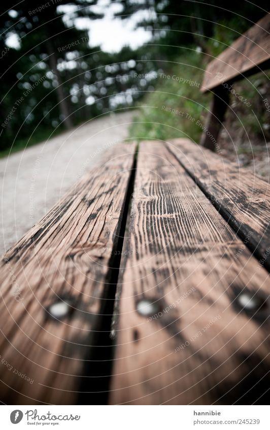 sitz!platz! wandern Park Wald Erholung sitzen warten alt eckig braun grau grün Bank Holz Wege & Pfade Spaziergang Pause verwittert Einsamkeit Natur Farbfoto