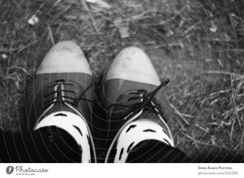 <3 feminin Frau Erwachsene Beine Fuß 1 Mensch Mode Strümpfe Leggings Schuhbänder Schuhe stehen außergewöhnlich trendy einzigartig Schwarzweißfoto Außenaufnahme