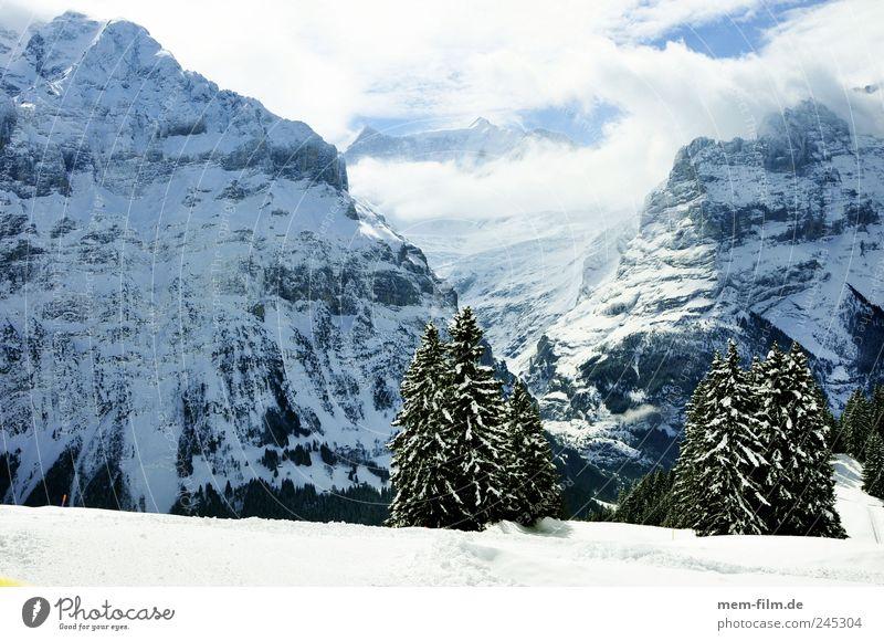 grindelwald Grindelwald Winterurlaub Schweiz schnee sonnig Berge u. Gebirge Alpen Fiescherhorn