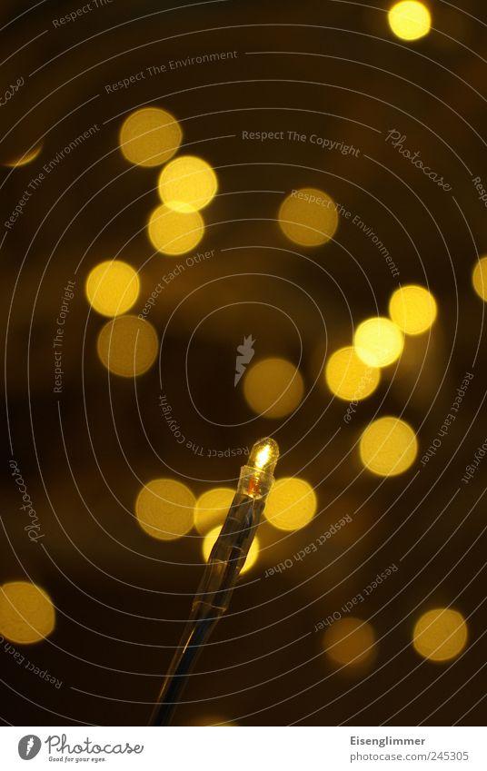 Vordergründig eine Leuchte Glühbirne Licht Lichterkette Lampe Lampenlicht Lampendetail hell dünn gelb Energie Konkurrenz sparsam Stimmung Beleuchtung