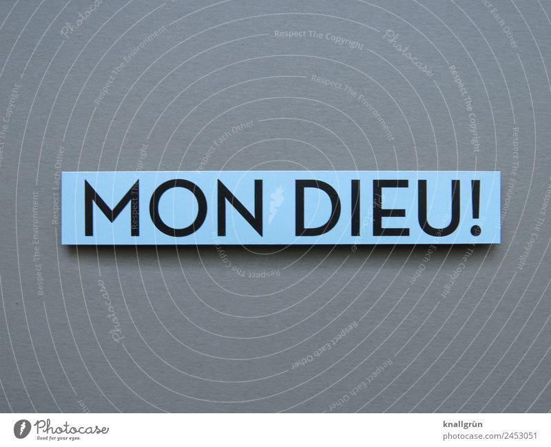 MON DIEU! Schriftzeichen Schilder & Markierungen Kommunizieren blau grau schwarz Gefühle Begeisterung Glaube Überraschung entdecken Religion & Glaube Ausruf