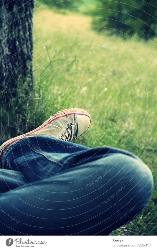 Auszeit Beine Fuß Baum Gras Park Jeanshose Turnschuh Erholung träumen blau grün Gelassenheit ruhig Freizeit & Hobby Pause Einsamkeit nachdenklich Farbfoto
