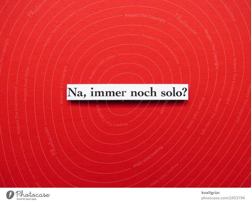 Na, immer noch solo? Schriftzeichen Schilder & Markierungen Kommunizieren rot schwarz weiß Gefühle Zusammensein Liebe Verliebtheit Neugier Interesse