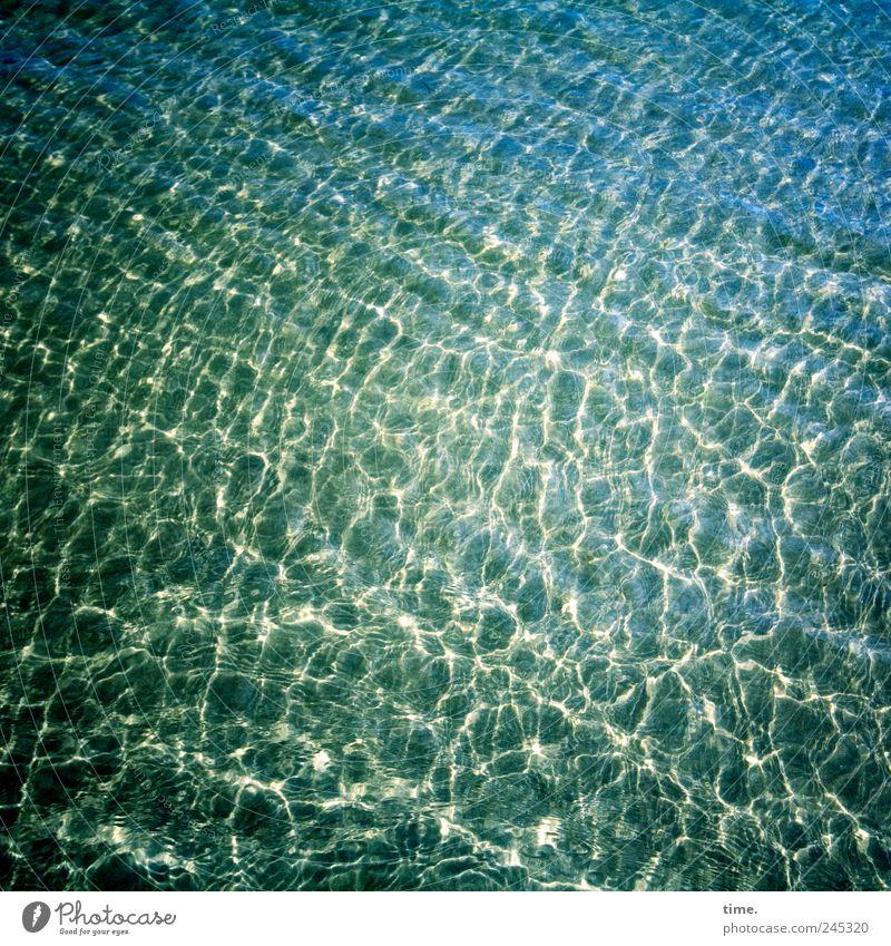 Sylter Craquelé Wasser grün blau Meer gelb Landschaft Umwelt Sand Küste Wellen glänzend nass Ordnung Nordsee feucht durchsichtig