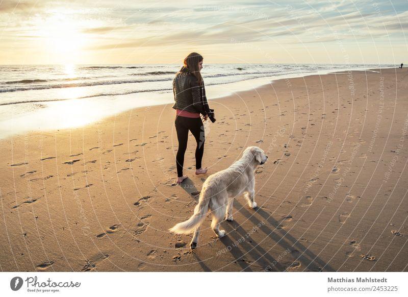 Strandspaziergang mit Hund Mensch feminin Junge Frau Jugendliche Erwachsene 1 18-30 Jahre Landschaft Sand Wasser Himmel Sonnenaufgang Sonnenuntergang Sommer