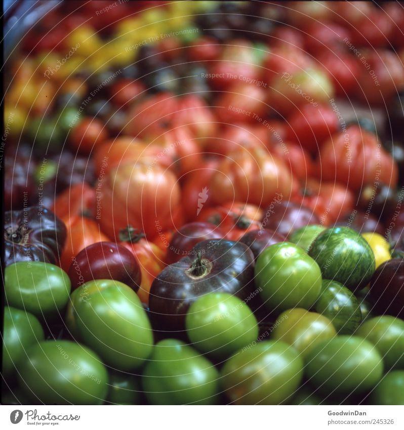 Vielfalt grün schön rot außergewöhnlich Frucht glänzend Lebensmittel Ernährung gut viele rund einzigartig einfach Gemüse nah fest